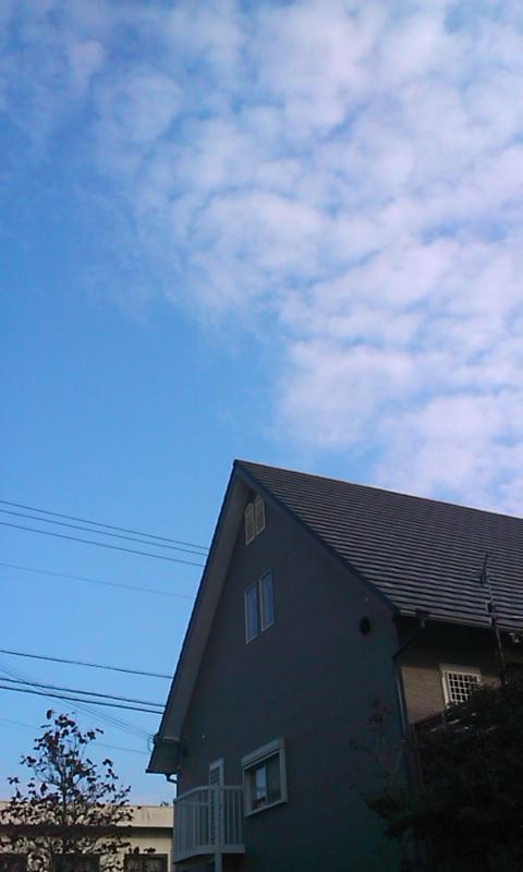 寒いねぇ!