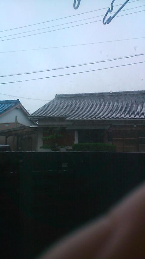 雨ですなぁ。